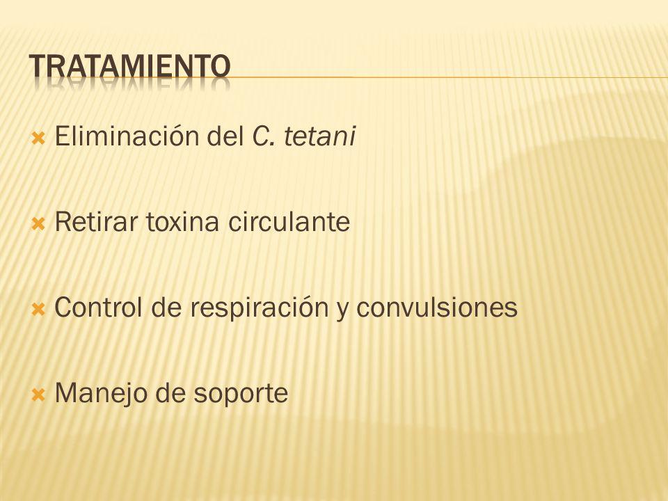 Tratamiento Eliminación del C. tetani Retirar toxina circulante