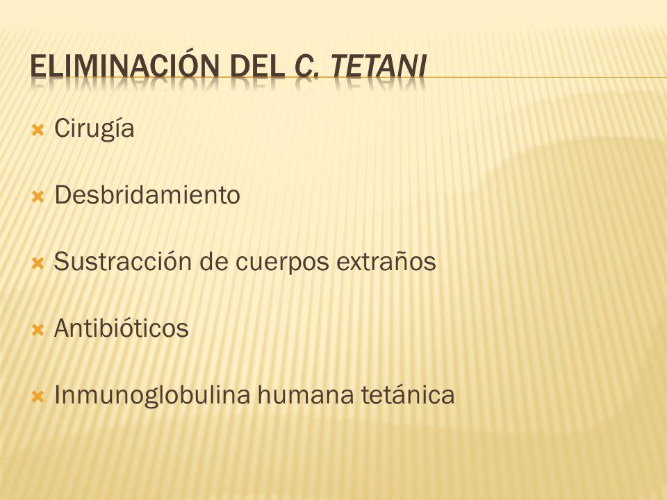 Eliminación del C. tetani