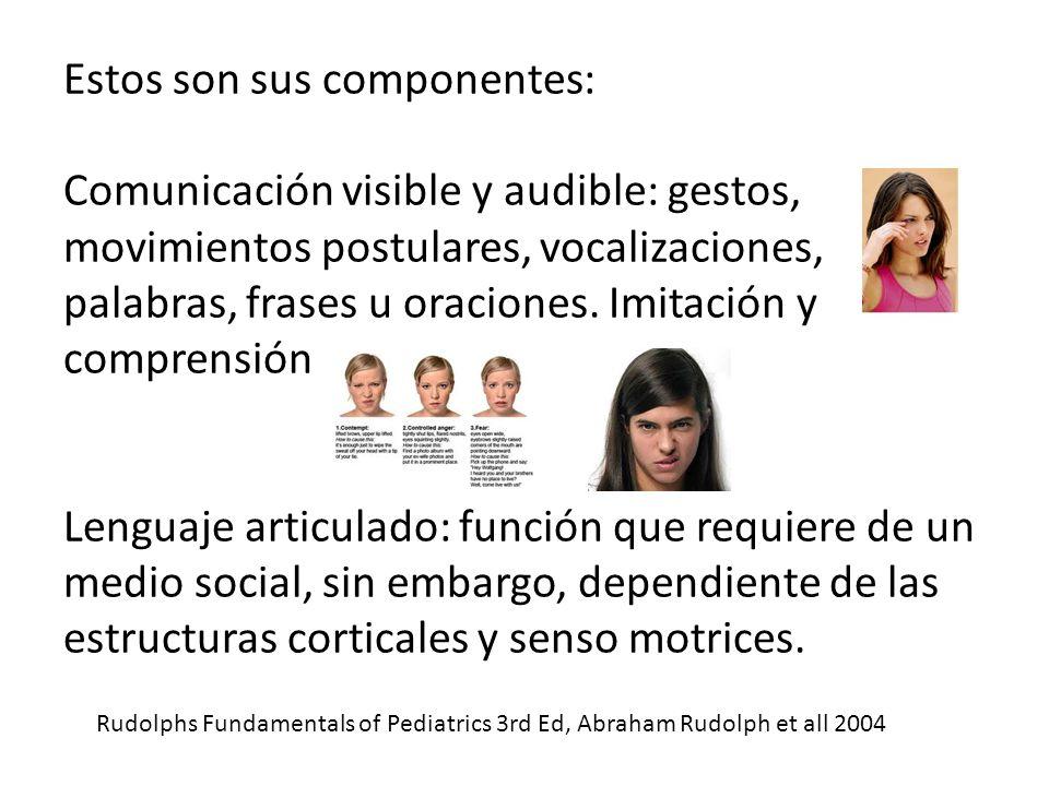 Estos son sus componentes: