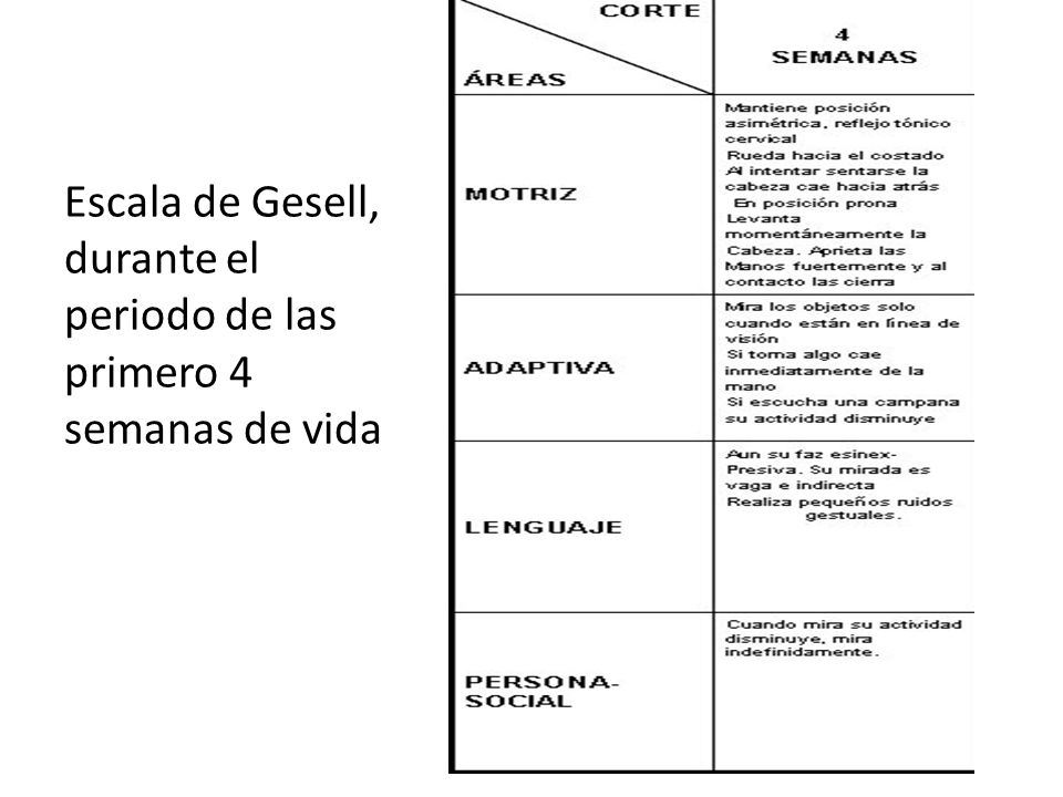 Escala de Gesell, durante el periodo de las primero 4 semanas de vida