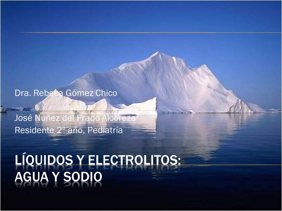 Líquidos y electrolitos: agua y SODIO