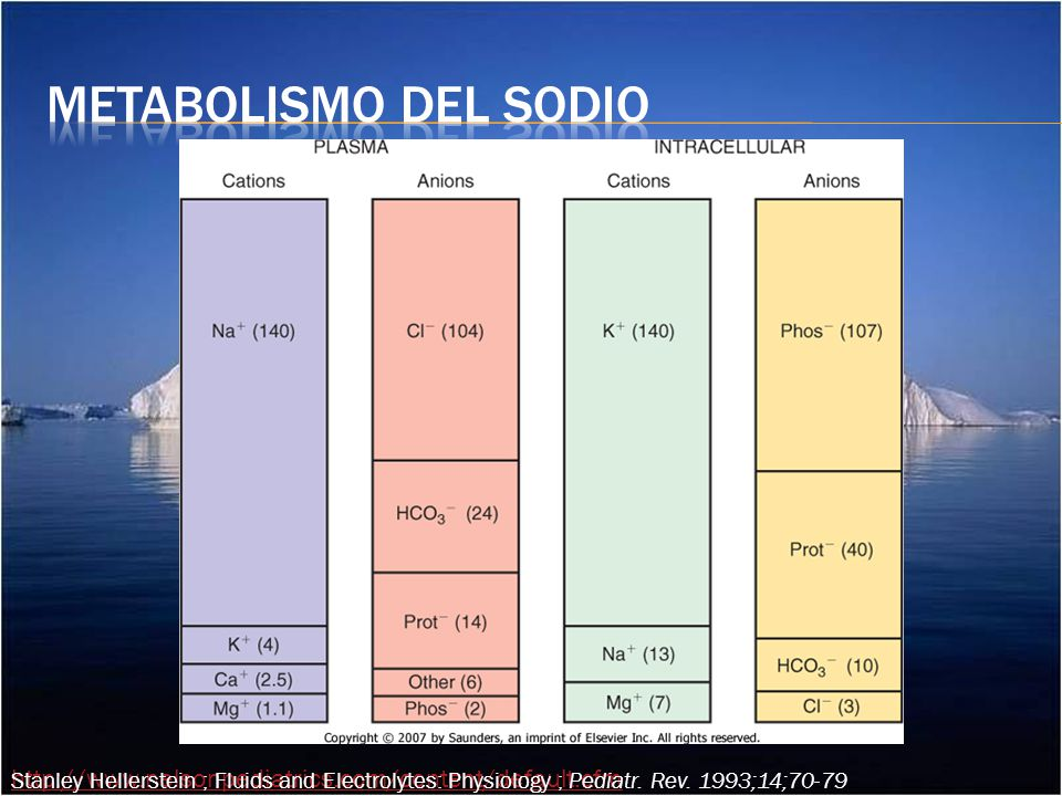 Metabolismo del sodio Stanley Hellerstein ; Fluids and Electrolytes: Physiology ; Pediatr. Rev. 1993;14;70-79.