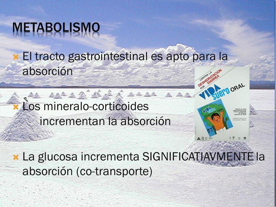 Metabolismo El tracto gastrointestinal es apto para la absorción