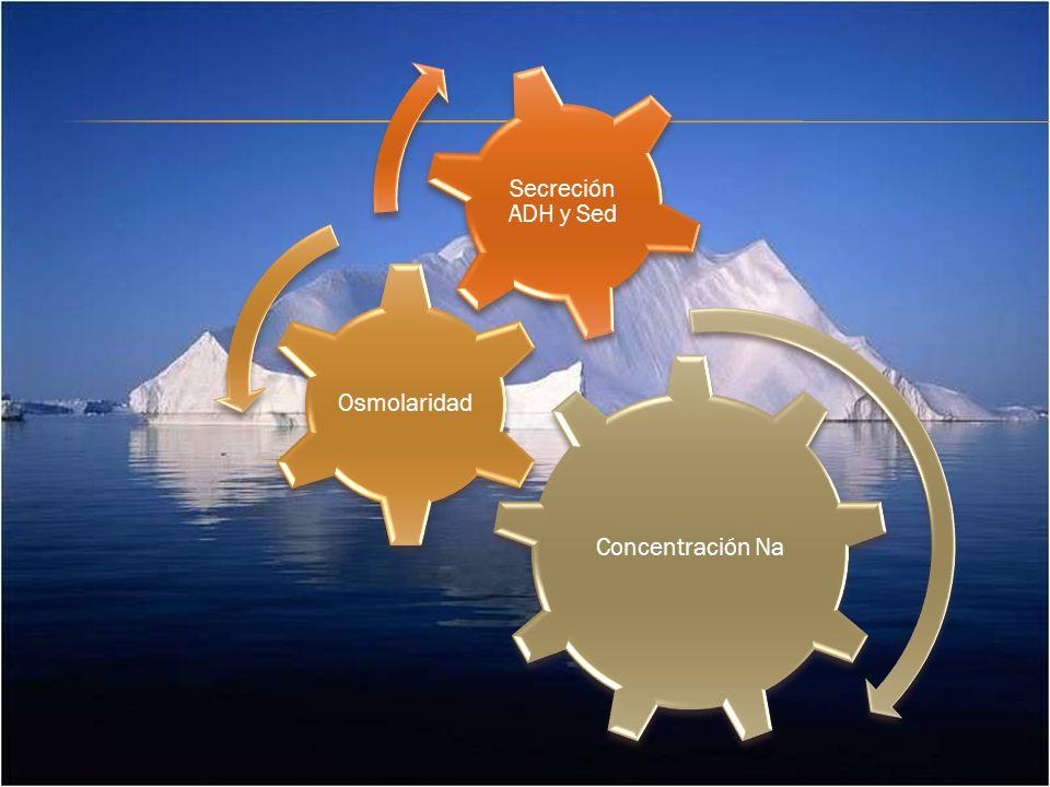Concentración Na Osmolaridad Secreción ADH y Sed