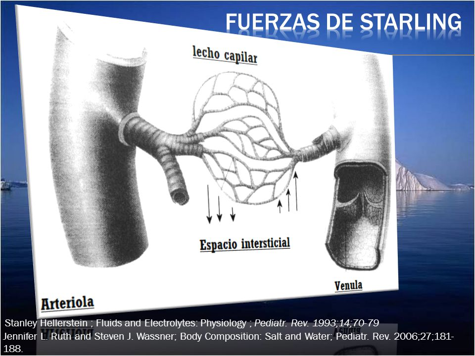 Fuerzas de Starling Stanley Hellerstein ; Fluids and Electrolytes: Physiology ; Pediatr. Rev. 1993;14;70-79.
