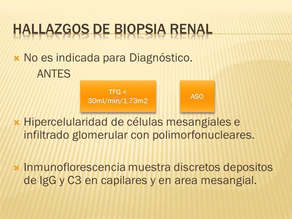 Hallazgos de Biopsia renal