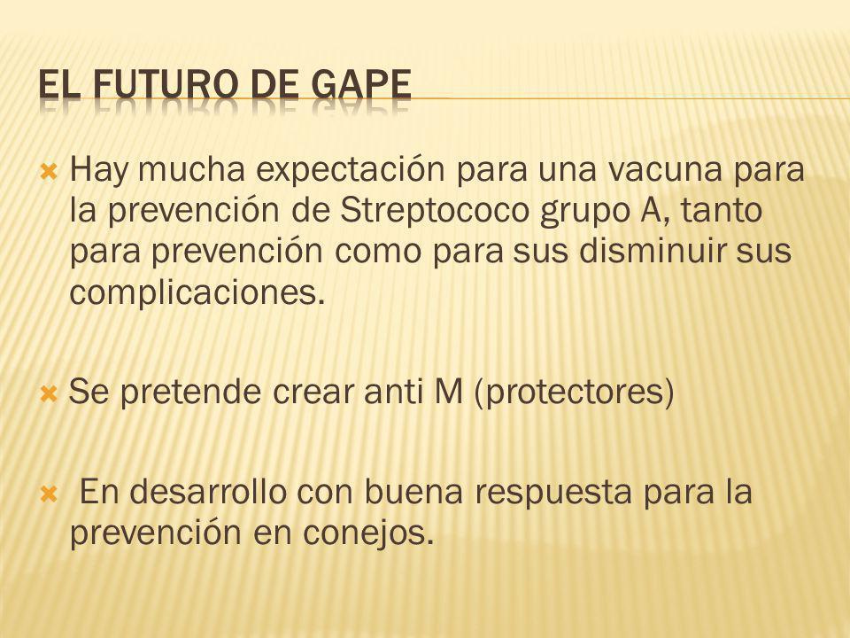 El Futuro de GAPE