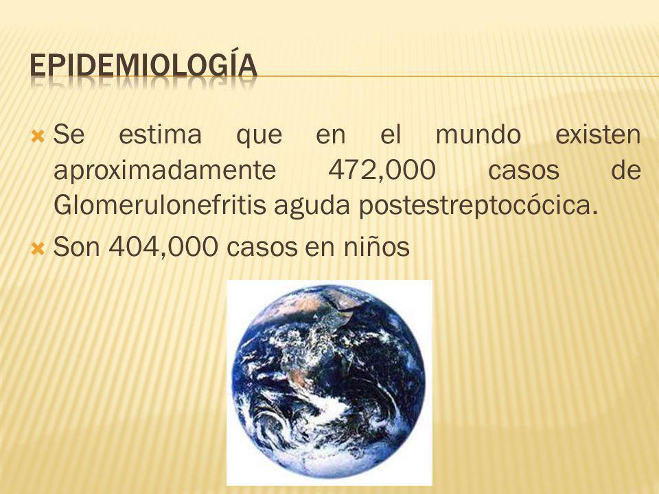 Epidemiología Se estima que en el mundo existen aproximadamente 472,000 casos de Glomerulonefritis aguda postestreptocócica.