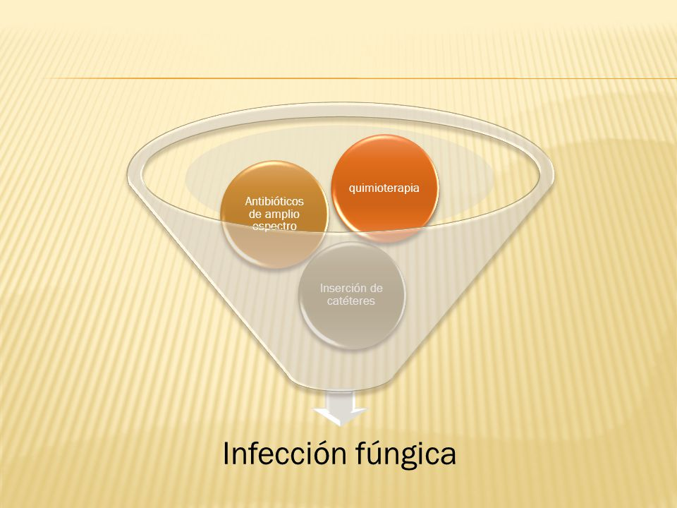 Infección fúngica quimioterapia Antibióticos de amplio espectro