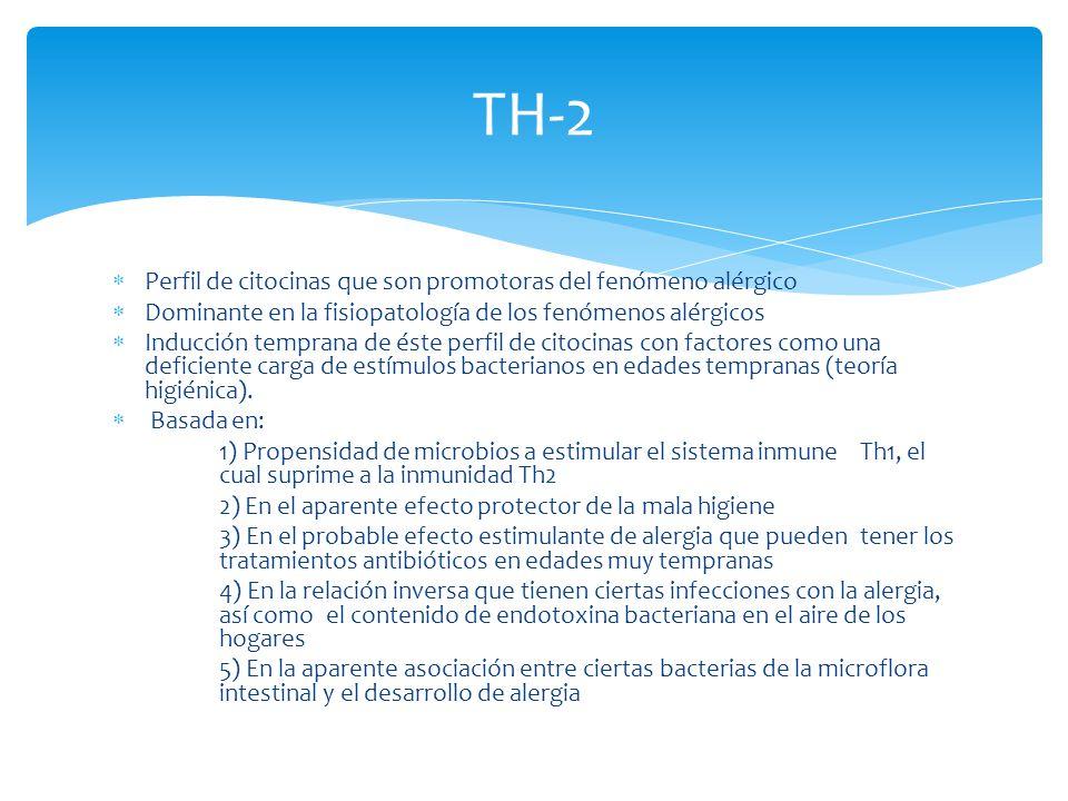 TH-2 Perfil de citocinas que son promotoras del fenómeno alérgico