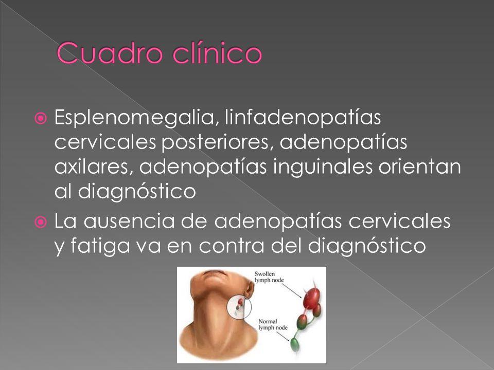 Cuadro clínico Esplenomegalia, linfadenopatías cervicales posteriores, adenopatías axilares, adenopatías inguinales orientan al diagnóstico.