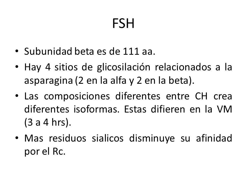 FSH Subunidad beta es de 111 aa.