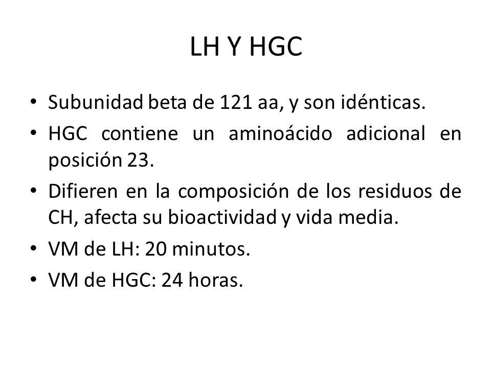 LH Y HGC Subunidad beta de 121 aa, y son idénticas.