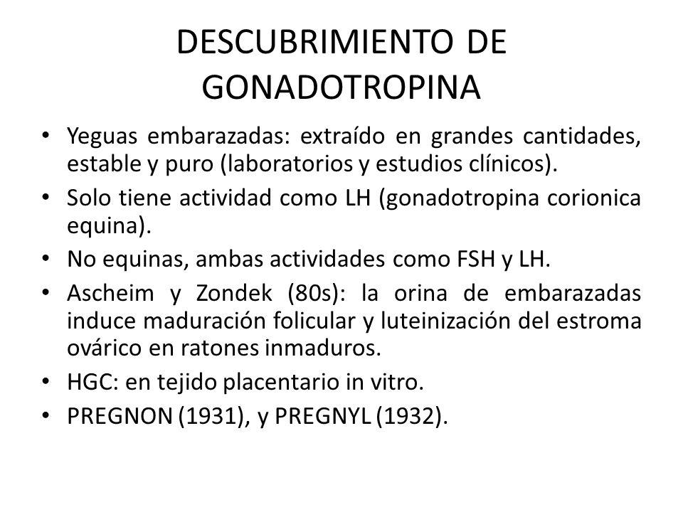 DESCUBRIMIENTO DE GONADOTROPINA