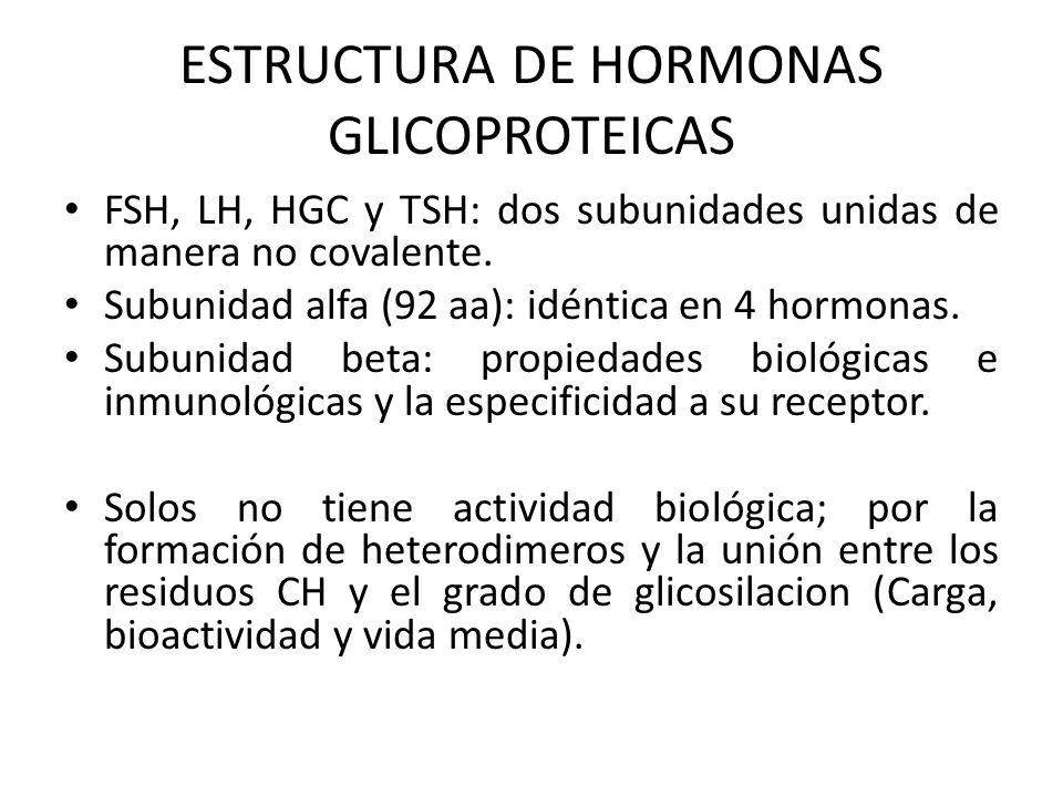 ESTRUCTURA DE HORMONAS GLICOPROTEICAS