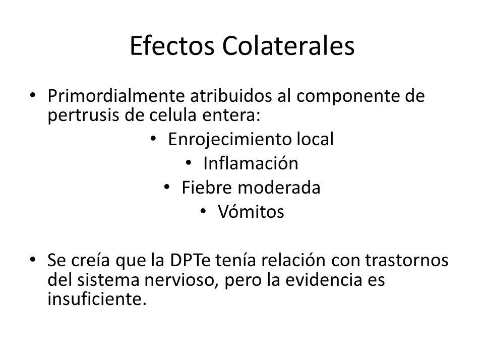 Efectos Colaterales Primordialmente atribuidos al componente de pertrusis de celula entera: Enrojecimiento local.