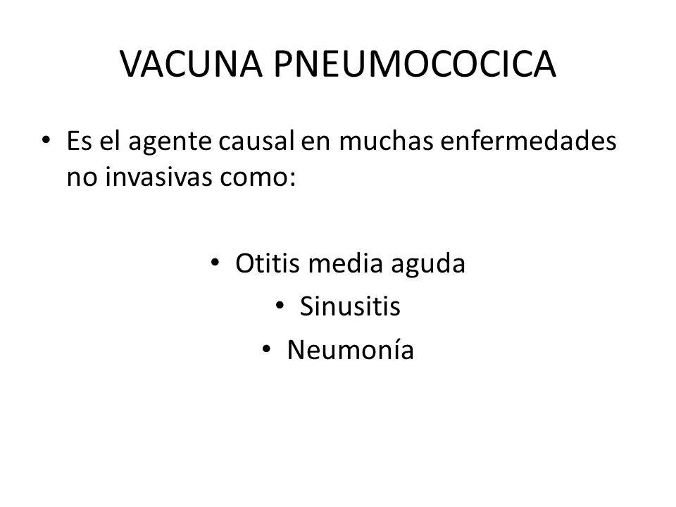 VACUNA PNEUMOCOCICA Es el agente causal en muchas enfermedades no invasivas como: Otitis media aguda.