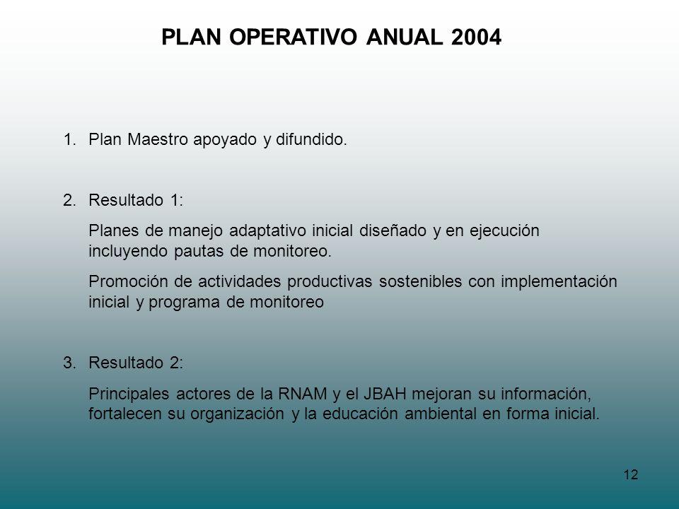 PLAN OPERATIVO ANUAL 2004 Plan Maestro apoyado y difundido.
