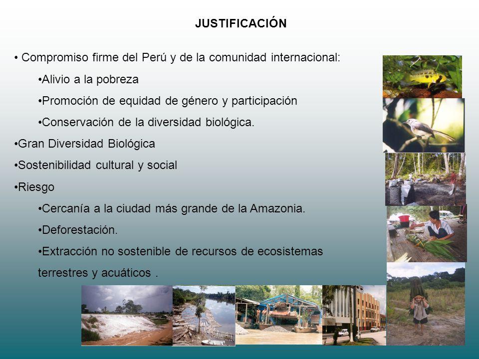 JUSTIFICACIÓN Compromiso firme del Perú y de la comunidad internacional: Alivio a la pobreza. Promoción de equidad de género y participación.