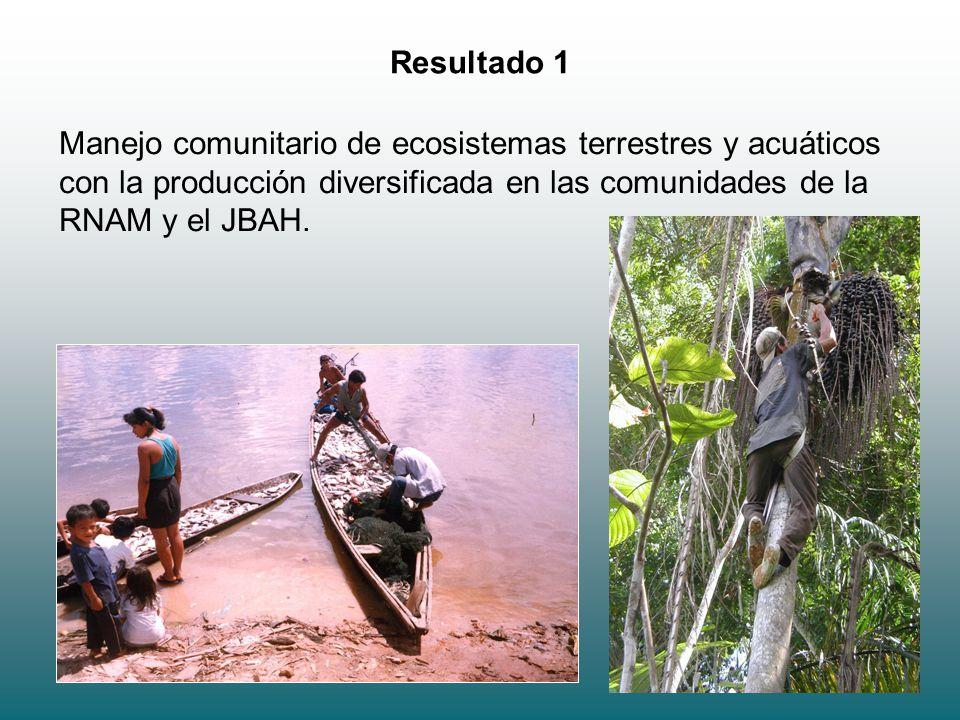 Resultado 1 Manejo comunitario de ecosistemas terrestres y acuáticos con la producción diversificada en las comunidades de la RNAM y el JBAH.