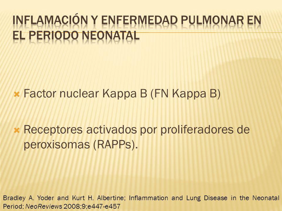 Inflamación y enfermedad pulmonar en el periodo neonatal