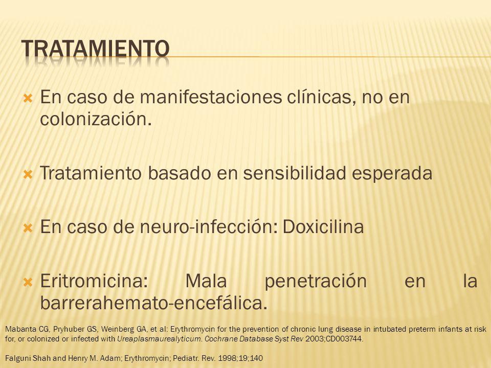 tratamiento En caso de manifestaciones clínicas, no en colonización.
