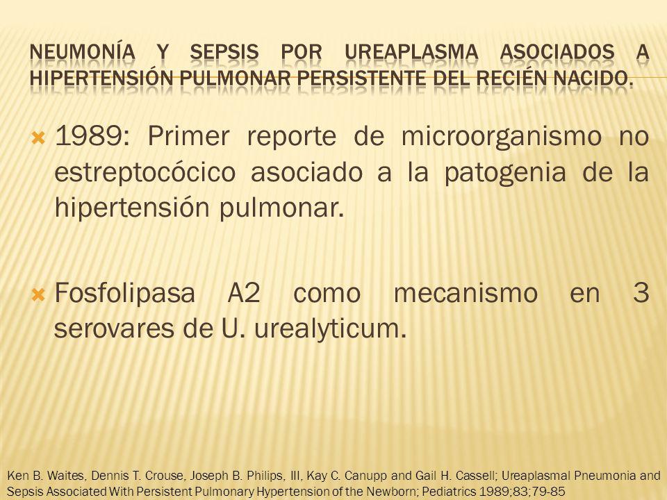 Fosfolipasa A2 como mecanismo en 3 serovares de U. urealyticum.