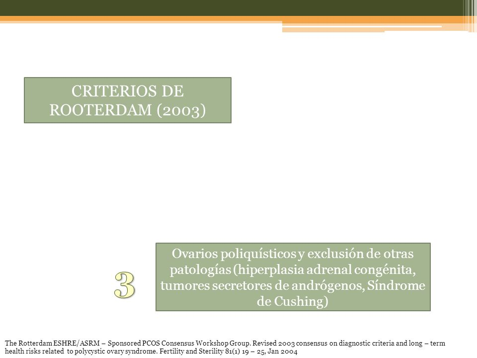 CRITERIOS DE ROOTERDAM (2003)