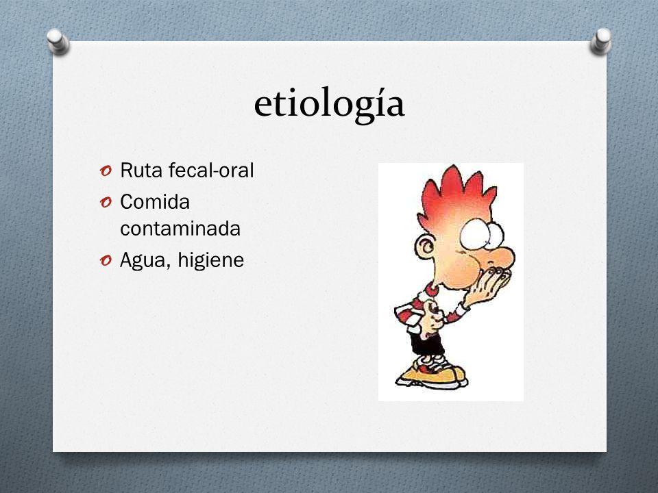 etiología Ruta fecal-oral Comida contaminada Agua, higiene