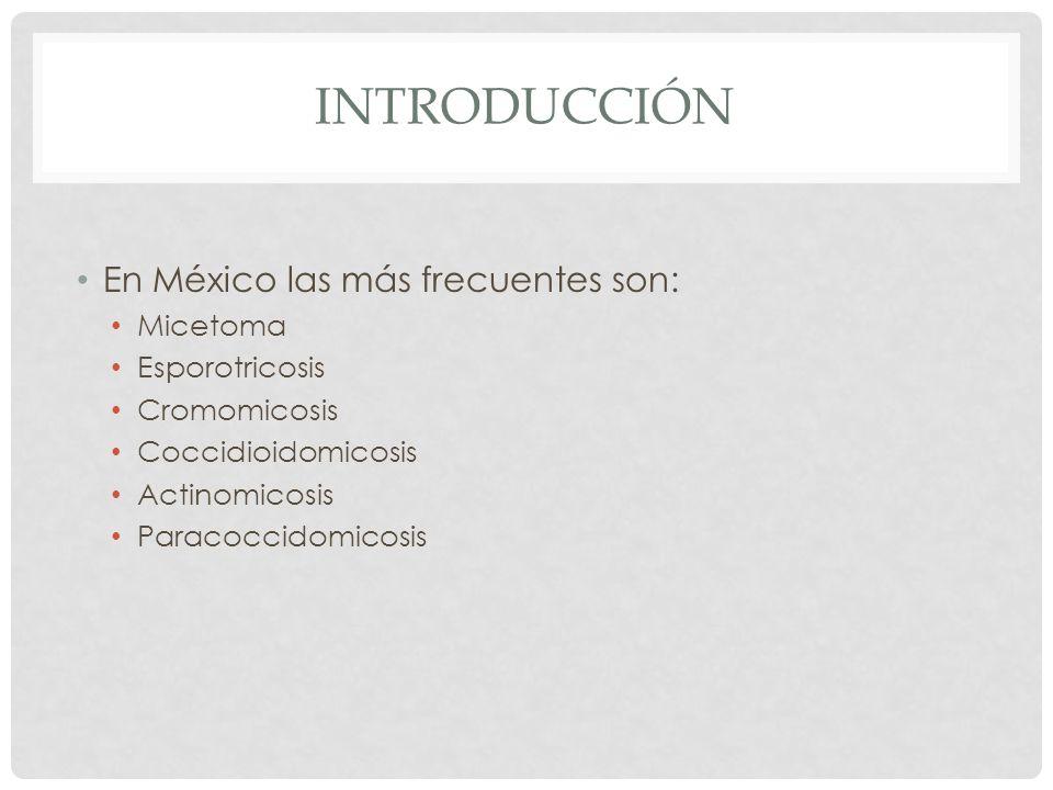 Introducción En México las más frecuentes son: Micetoma Esporotricosis