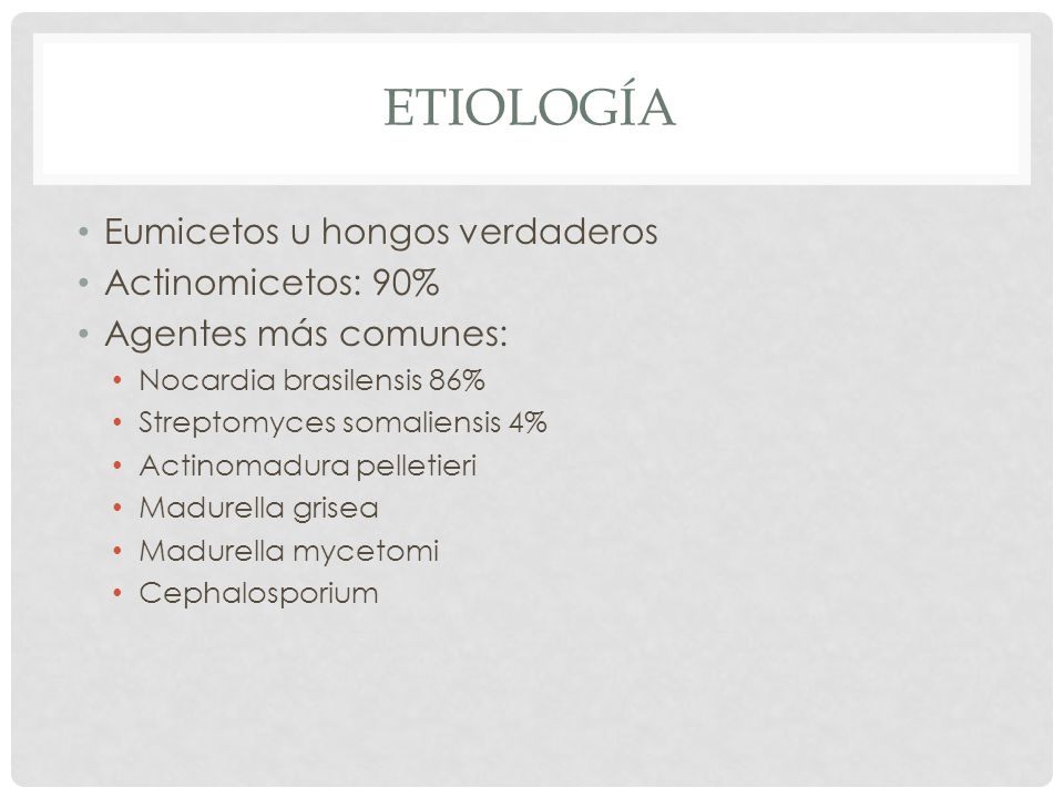 etiología Eumicetos u hongos verdaderos Actinomicetos: 90%