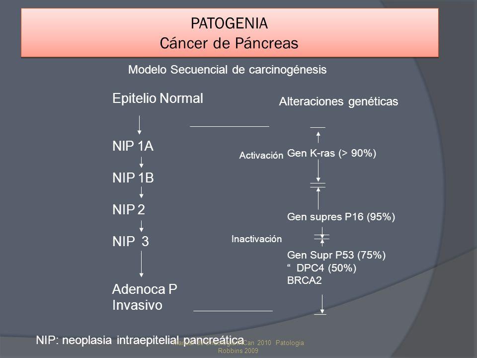 PATOGENIA Cáncer de Páncreas