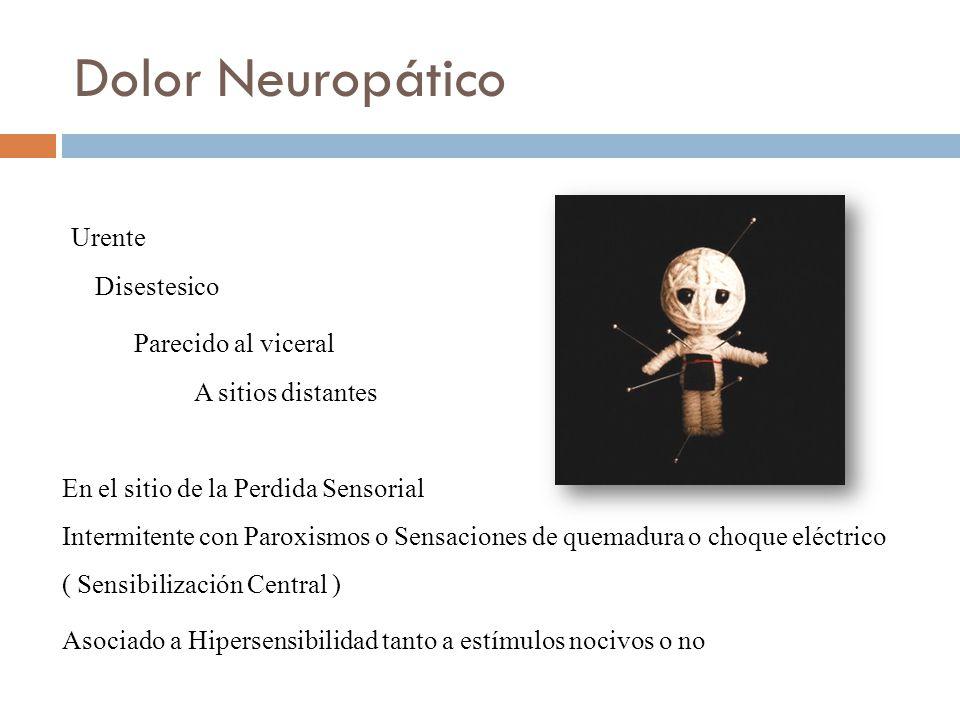 Dolor Neuropático Urente Parecido al viceral Disestesico