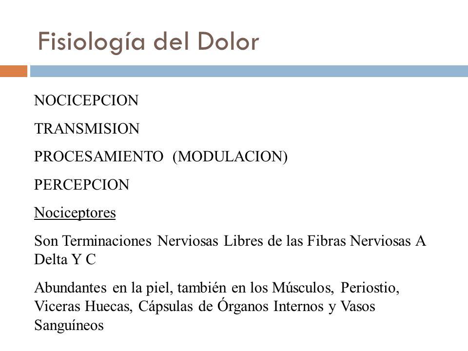 Fisiología del Dolor NOCICEPCION TRANSMISION