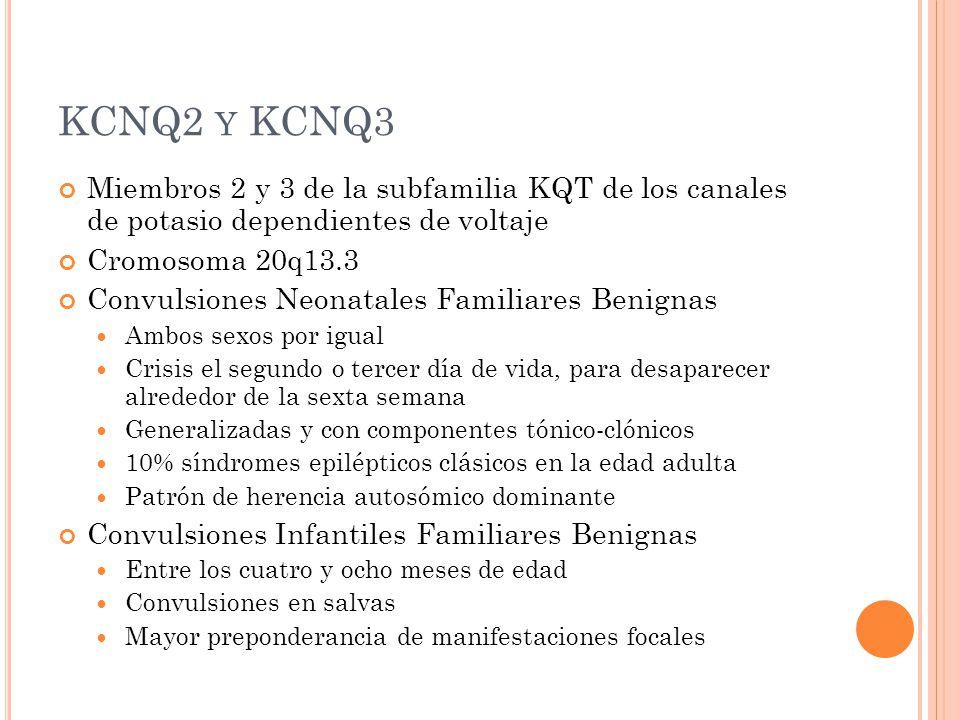 KCNQ2 y KCNQ3 Miembros 2 y 3 de la subfamilia KQT de los canales de potasio dependientes de voltaje.