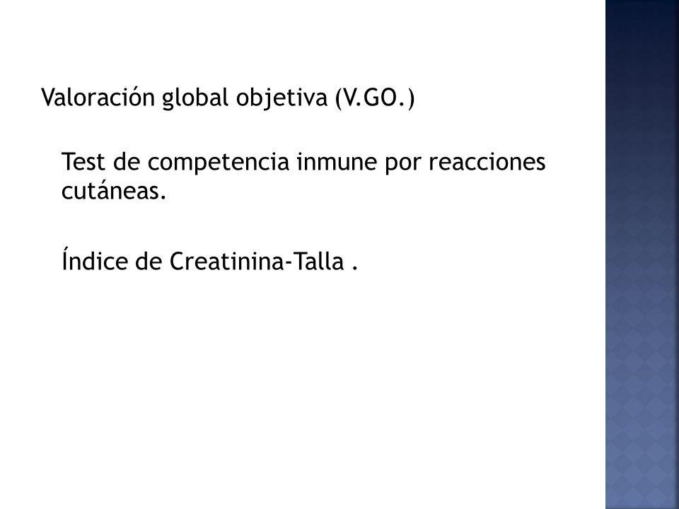 Valoración global objetiva (V.GO.)