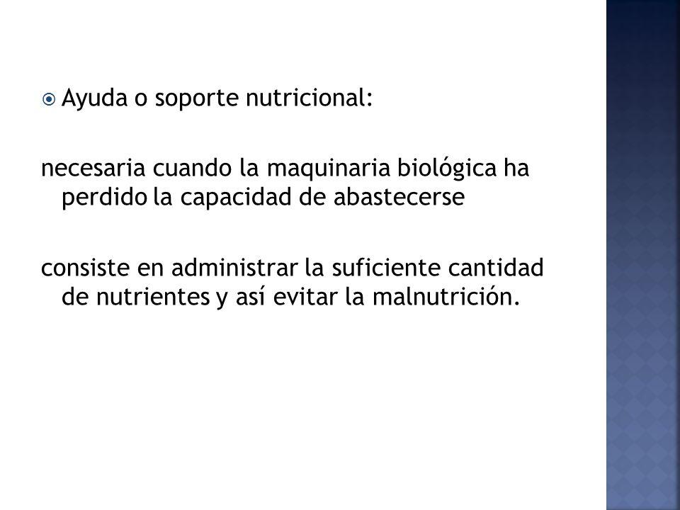 Ayuda o soporte nutricional: