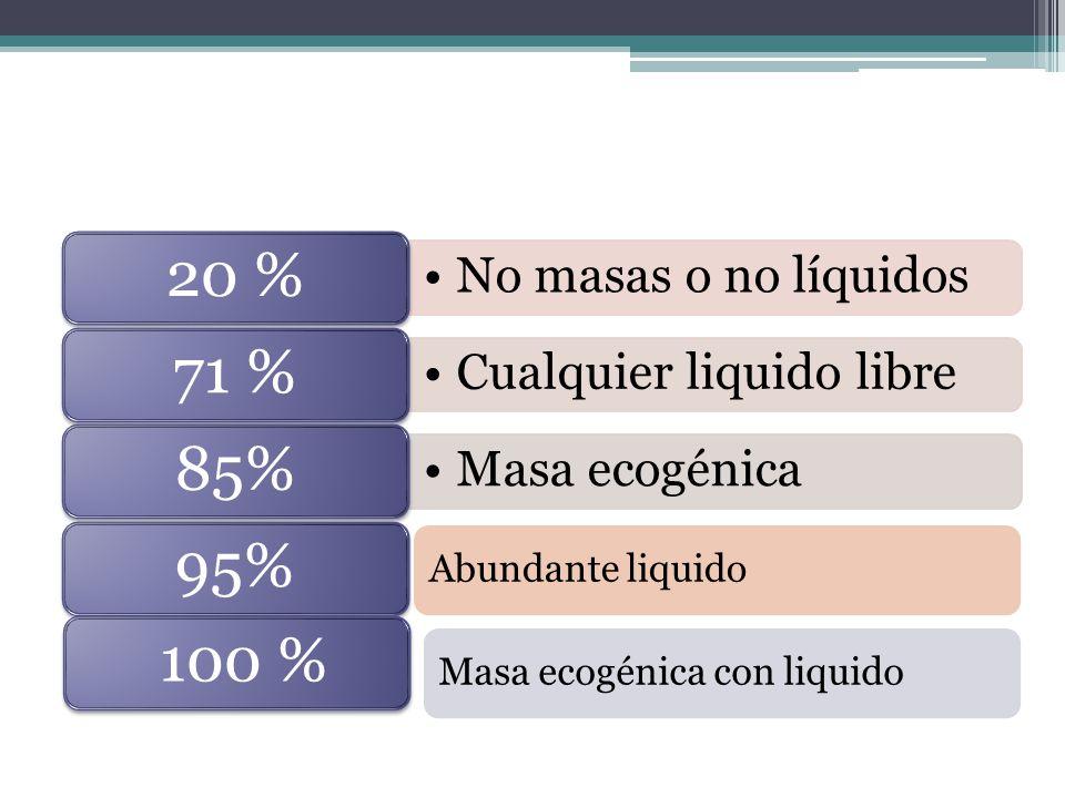 Masa ecogénica con liquido