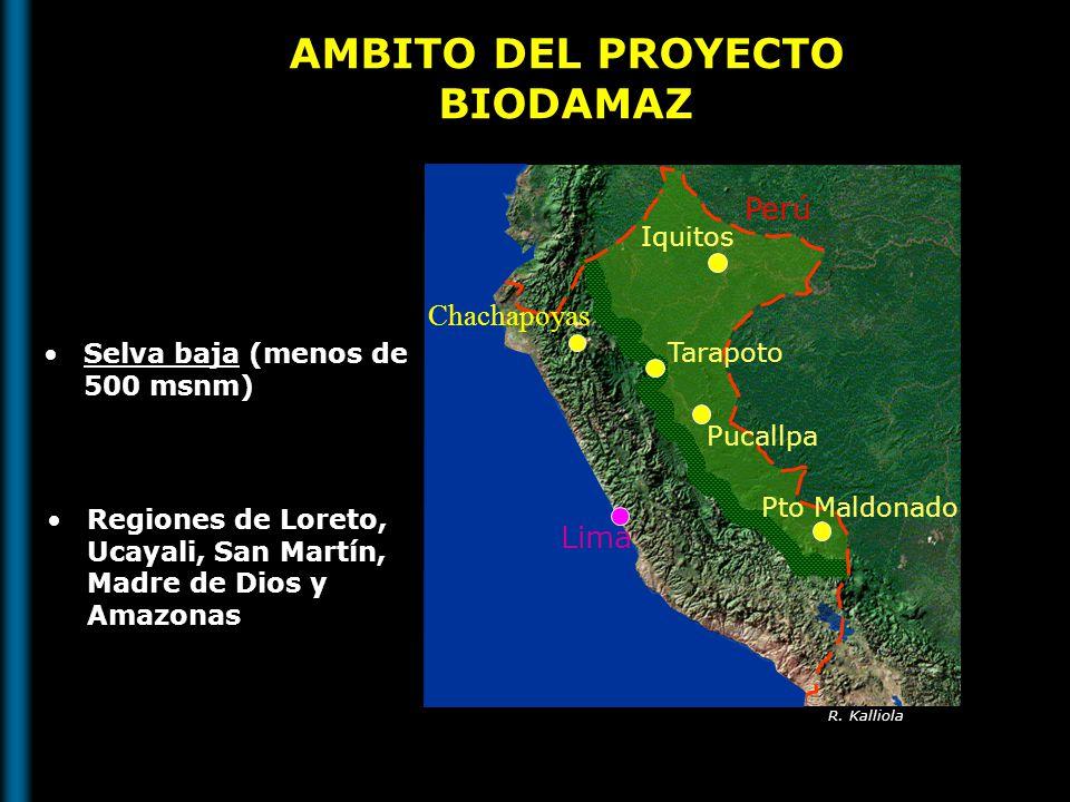 AMBITO DEL PROYECTO BIODAMAZ