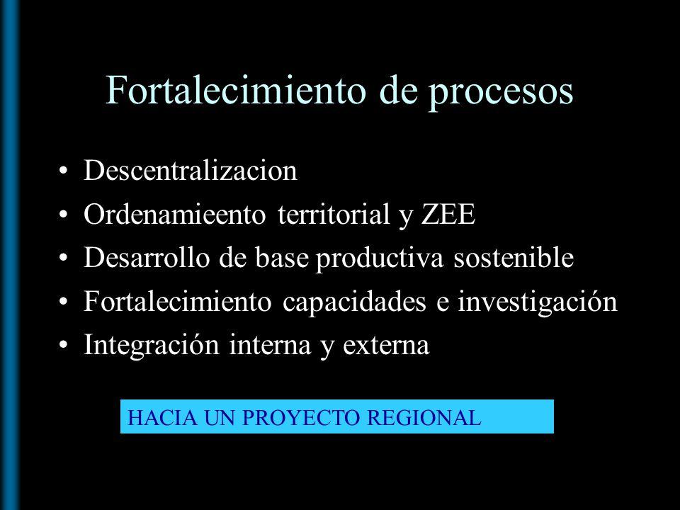 Fortalecimiento de procesos