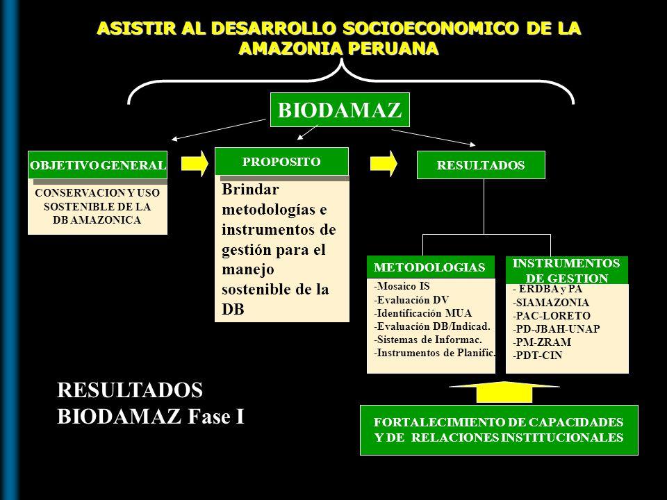 RESULTADOS BIODAMAZ Fase I