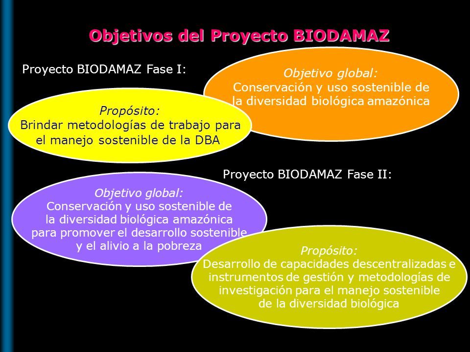 Objetivos del Proyecto BIODAMAZ