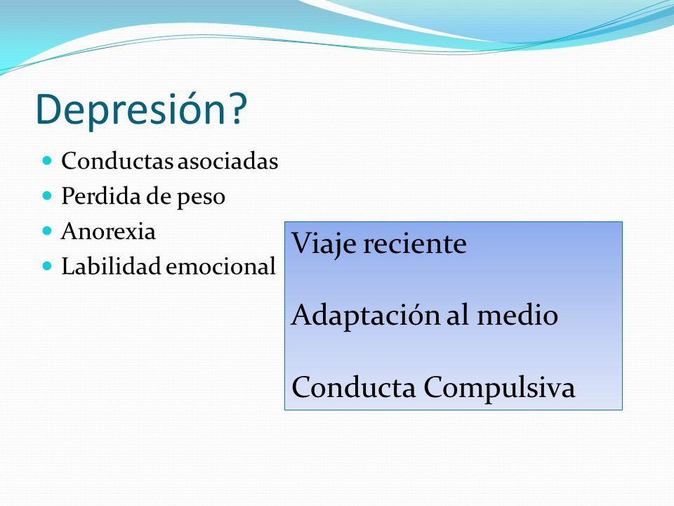 Depresión Viaje reciente Adaptación al medio Conducta Compulsiva