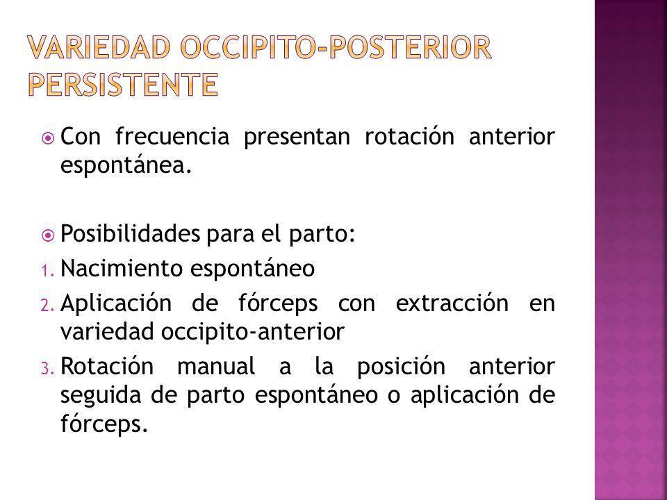 Variedad occipito-posterior persistente
