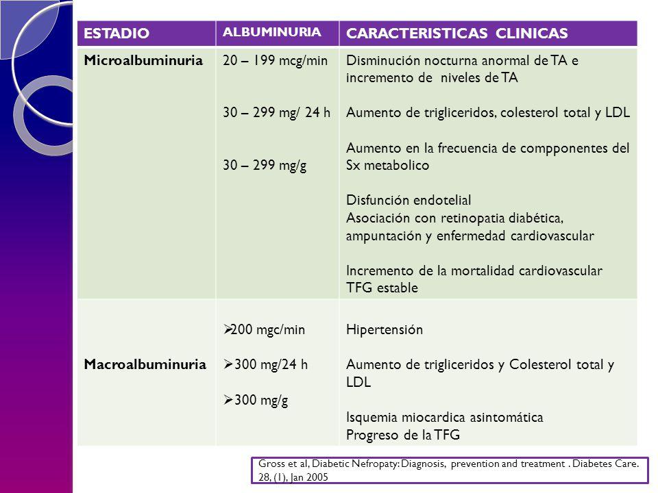 NEFROPATIA DIABÉTICA ESTADIO CARACTERISTICAS CLINICAS Microalbuminuria