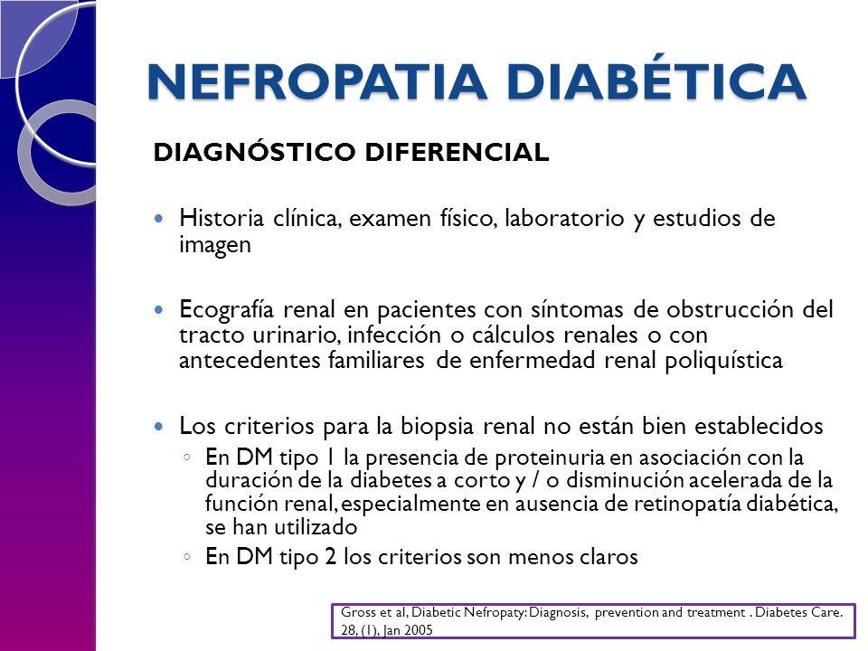 NEFROPATIA DIABÉTICA DIAGNÓSTICO DIFERENCIAL