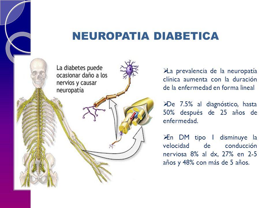 NEUROPATIA DIABETICA La prevalencia de la neuropatía clínica aumenta con la duración de la enfermedad en forma lineal.