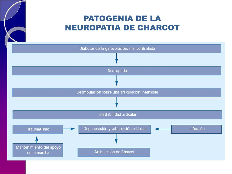 PATOGENIA DE LA NEUROPATIA DE CHARCOT