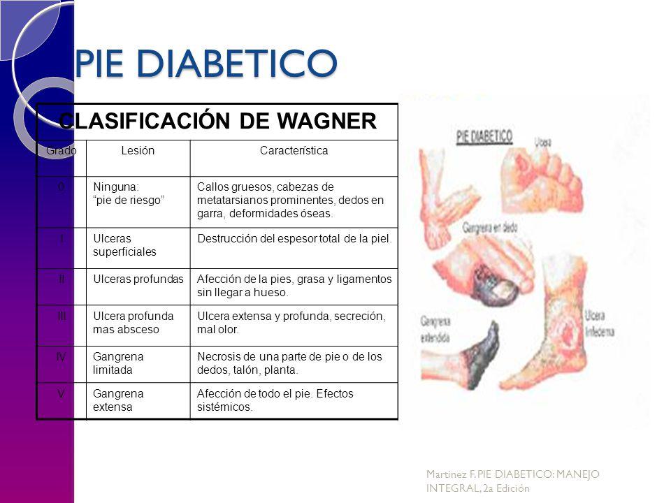 CLASIFICACIÓN DE WAGNER