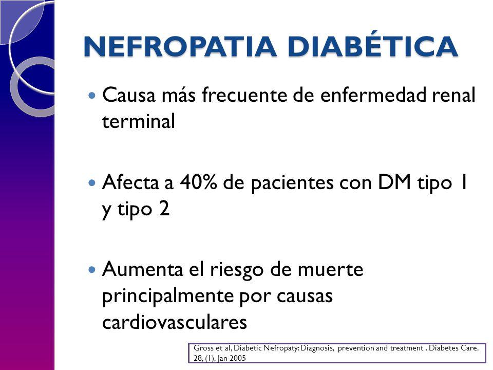 NEFROPATIA DIABÉTICA Causa más frecuente de enfermedad renal terminal